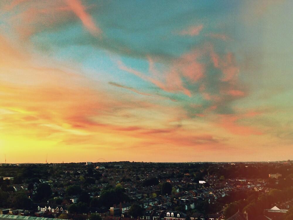 Sunset by Niralee Modha