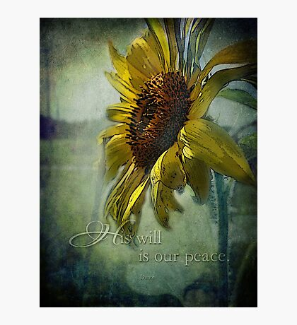 His will-for Christina Photographic Print