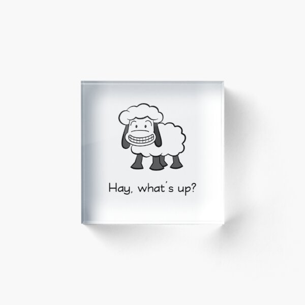 Hay, what's up? Acrylic Block