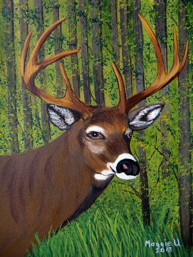 Buck by the forest by maggie326