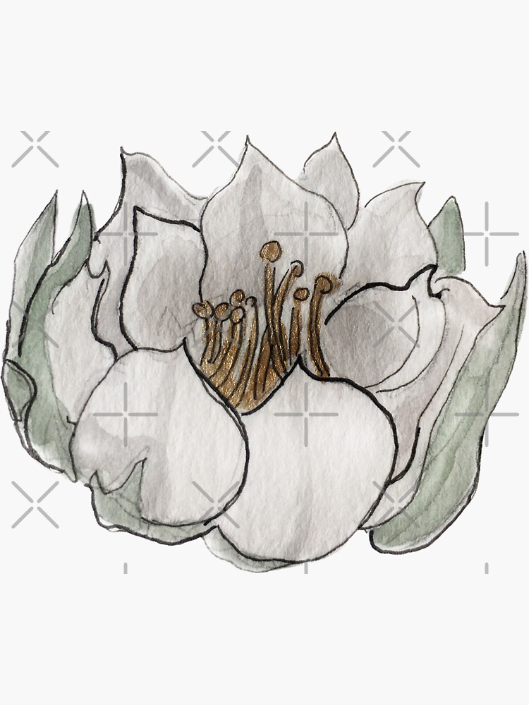 Queen of the Night Flower Illustration in Watercolor by WitchofWhimsy
