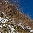 Frosty Bank by ionclad