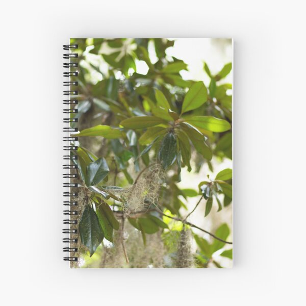 Magnolia Tree Spiral Notebook