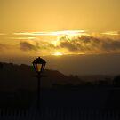South West Sunset by Catherine Davis