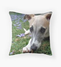 Whippet Puppy Among Jacaranda Flowers Throw Pillow