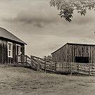 "Farm Buildings at ""Bygone Days"", Collingwood, ON, Canada  by Gerda Grice"