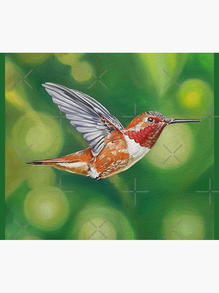 Rufous Hummingbird Painting by EmilyBickell
