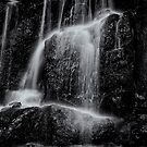 Water Light by Jeffrey  Sinnock