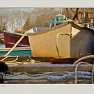 Sidelight, New Harbor, Maine by Dave  Higgins