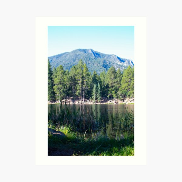 Pine Valley Art Print