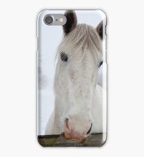 Hungry horse iPhone Case/Skin