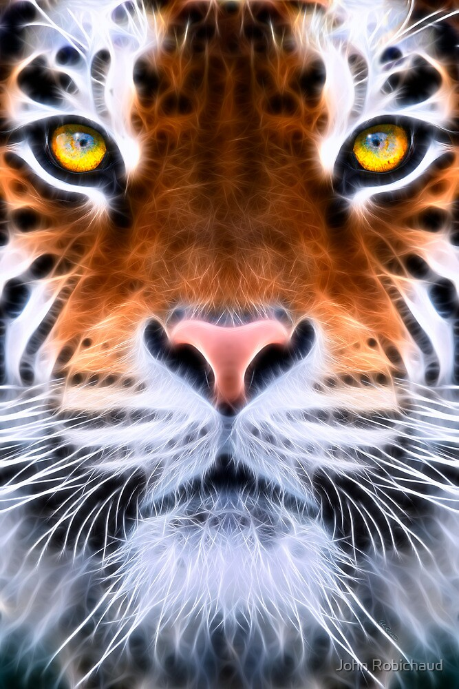 TIGER EYE by John Robichaud