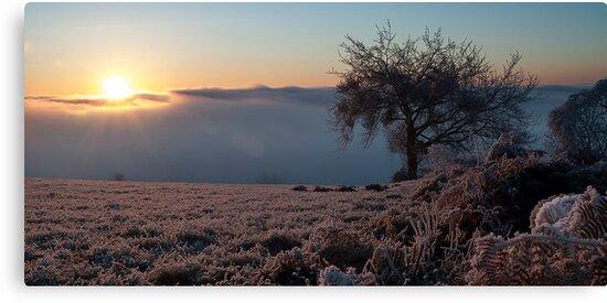 Winter sunrise by LukaVeren