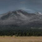Sunset Crater Volcano National Monument Looking West Toward The San Francisco Peaks in Arizona by Edith Reynolds