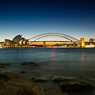 Harbour Night by Andrew Paranavitana