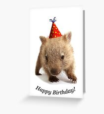 A wombat happy birthday. Greeting Card