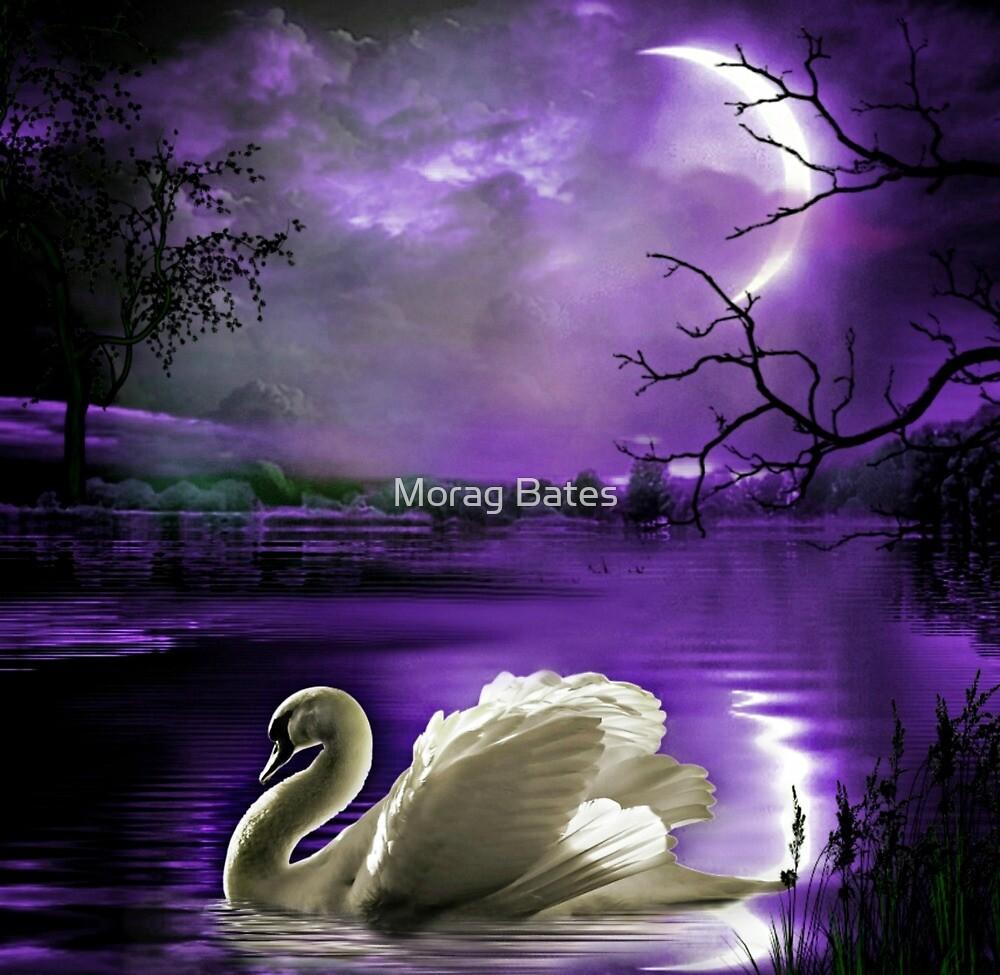 Moonlight Serenade by Morag Bates