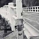 Old Tumut Bridge by Alyssa Passlow