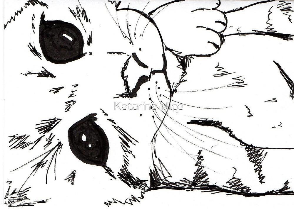 Woken kitten by Katarina Nice