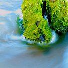 Sea Foam Green by jroch