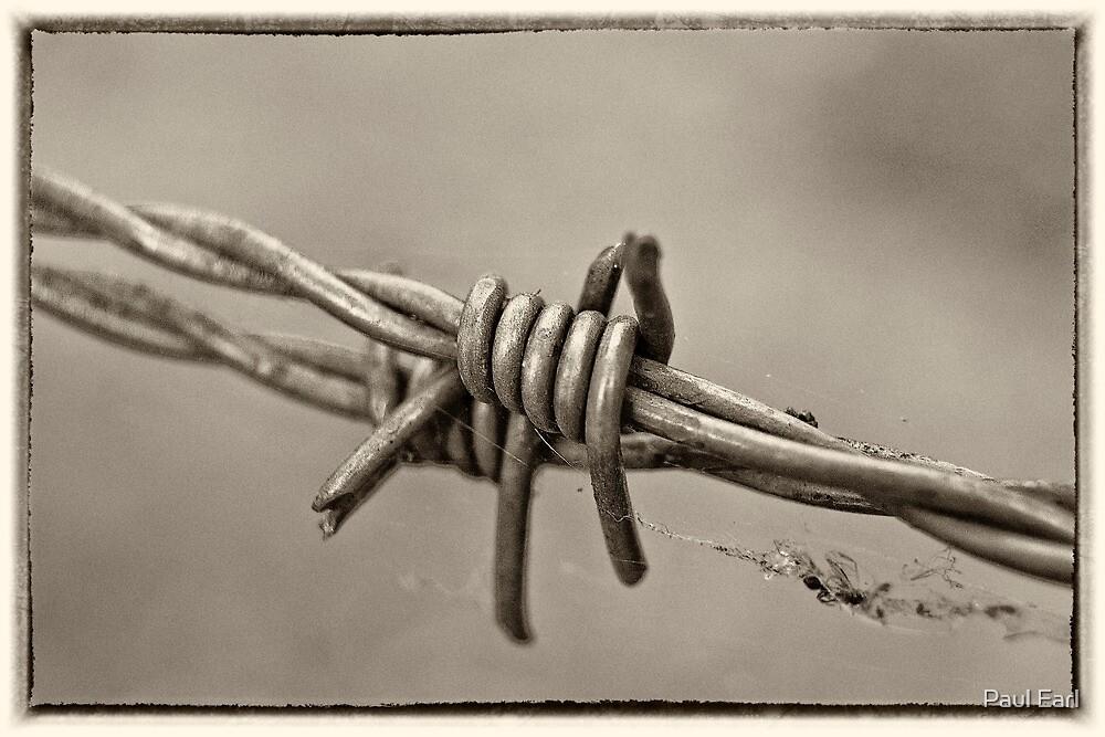 Barbed Too by Paul Earl