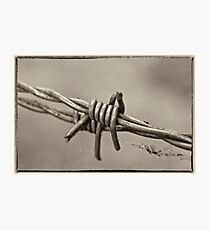 Barbed Too Photographic Print