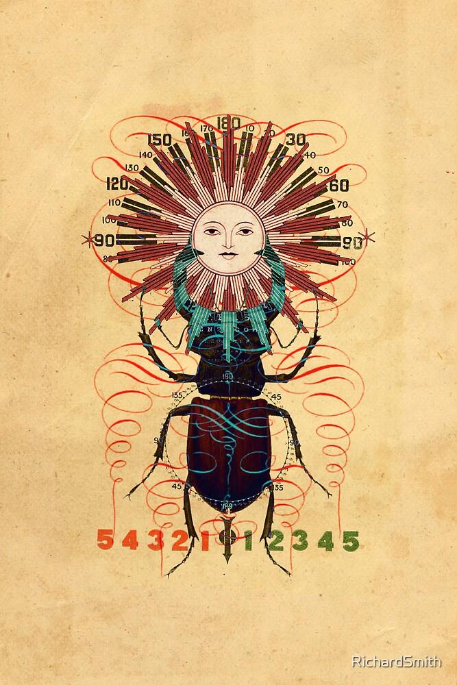 sun-beetle 1 by RichardSmith