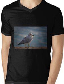 Gull Mens V-Neck T-Shirt