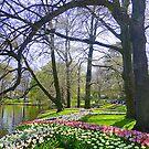 Keukenhof Park. by Lilian Marshall