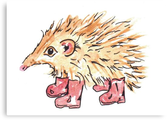 Hedgehog in wellies by Katarina Nice