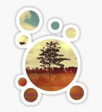 Trees Sticker