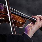 The violin  by nefetiti