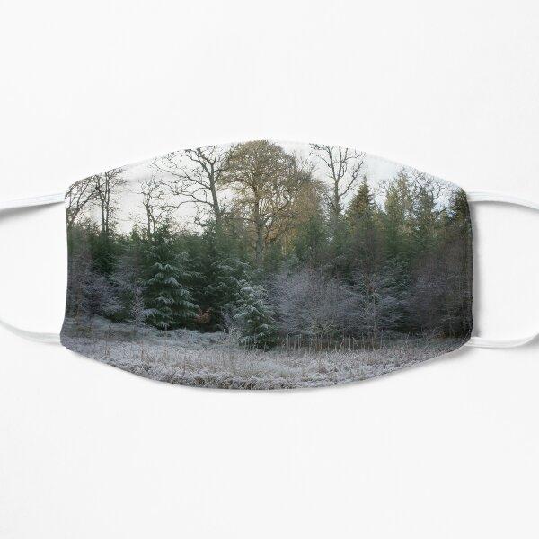 The Secret Woodland Pond in Winter Mask