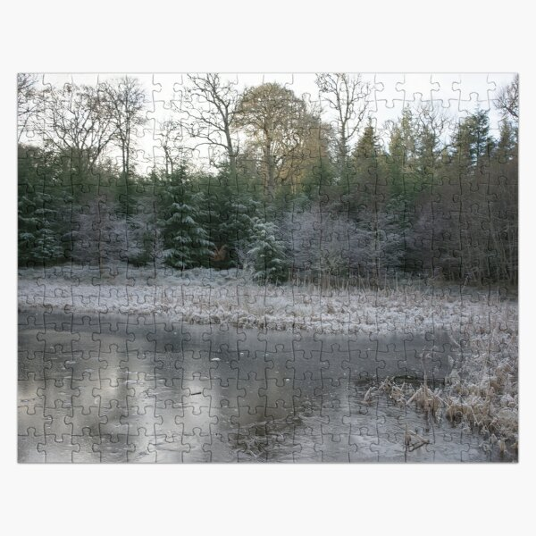The Secret Woodland Pond in Winter Jigsaw Puzzle