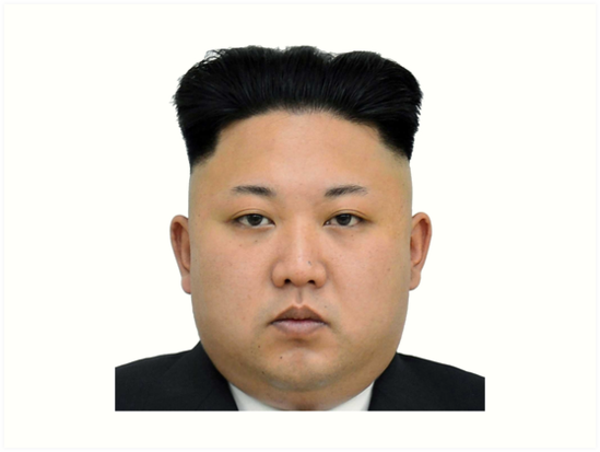 Kim Jong-un Face on something... :D by norton178