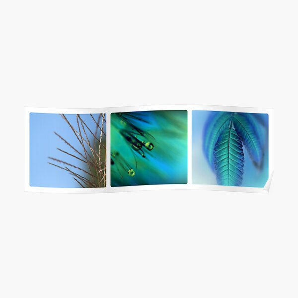 Blue Triptych Poster