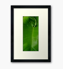 ©GS A Green New Thing II Framed Print