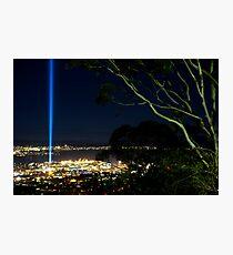 Spectra Tree - Hobart, Tasmania Photographic Print
