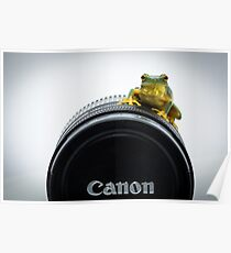 Canon Frog Poster