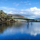 Craigbourne Dam Colebrook Tas  by Robert-Todd