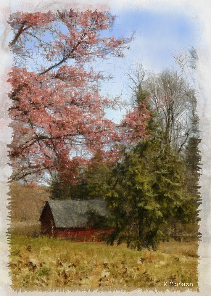 Cherry Blossom Time by Kenneth Hoffman