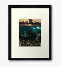 Under the sea... Framed Print