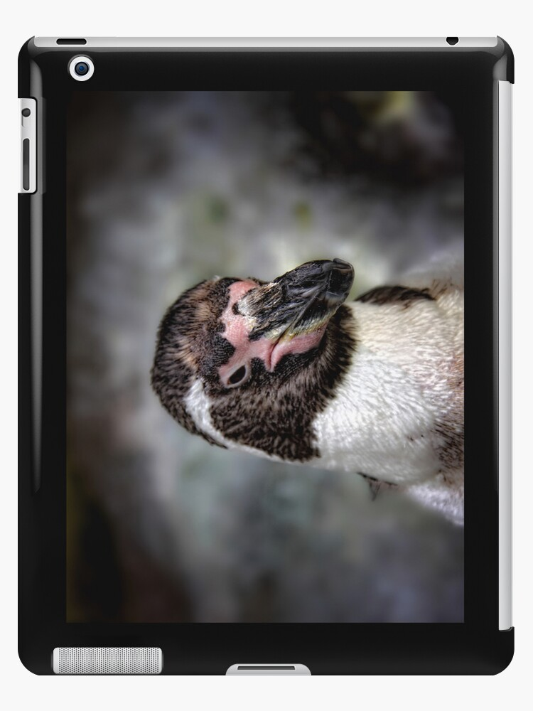 P.O.'d Penguin by Dan  Wampler