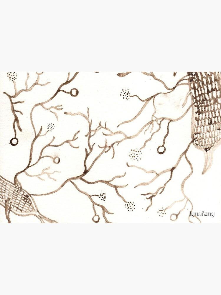 Arbuscular Mycorrhizal Fungi by lynnfang