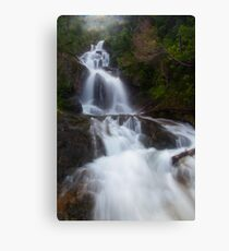 Mystical Canvas Print
