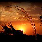 Sunset Splash by Kimberly Chadwick