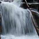WaterFall @ Valley of Flower Trek by gaurav0410