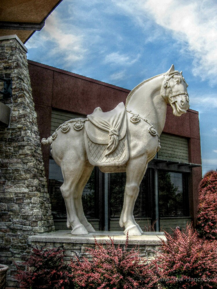 One of the Chinese Warrior Horses outside PF Chang's by Jane Neill-Hancock