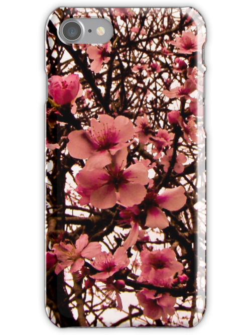 Blossom - iPhone Cover by KerryPurnell