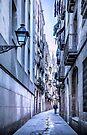 Urban Street by Svetlana Sewell
